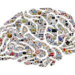 Trainen met hersengolven